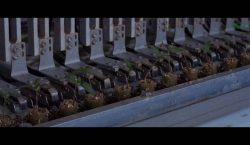 Krasoń - rozsady warzyw