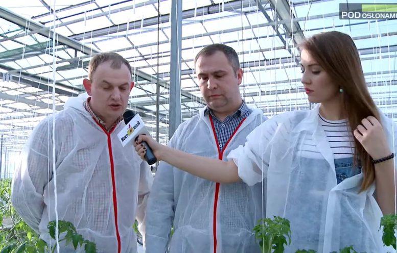 HortiWizja (odc. 3) - Początek uprawy pomidorów