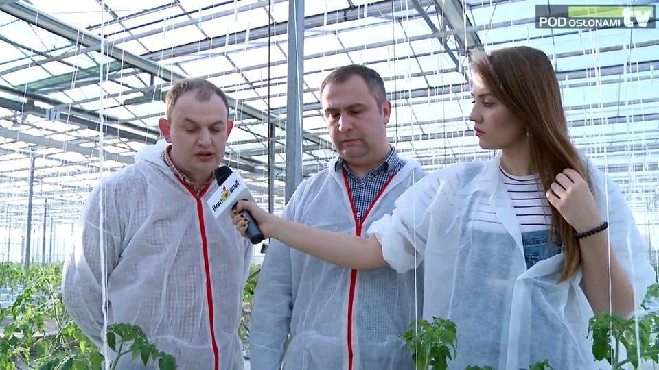 HortiWizja (odc. 3) – Początek uprawy pomidorów