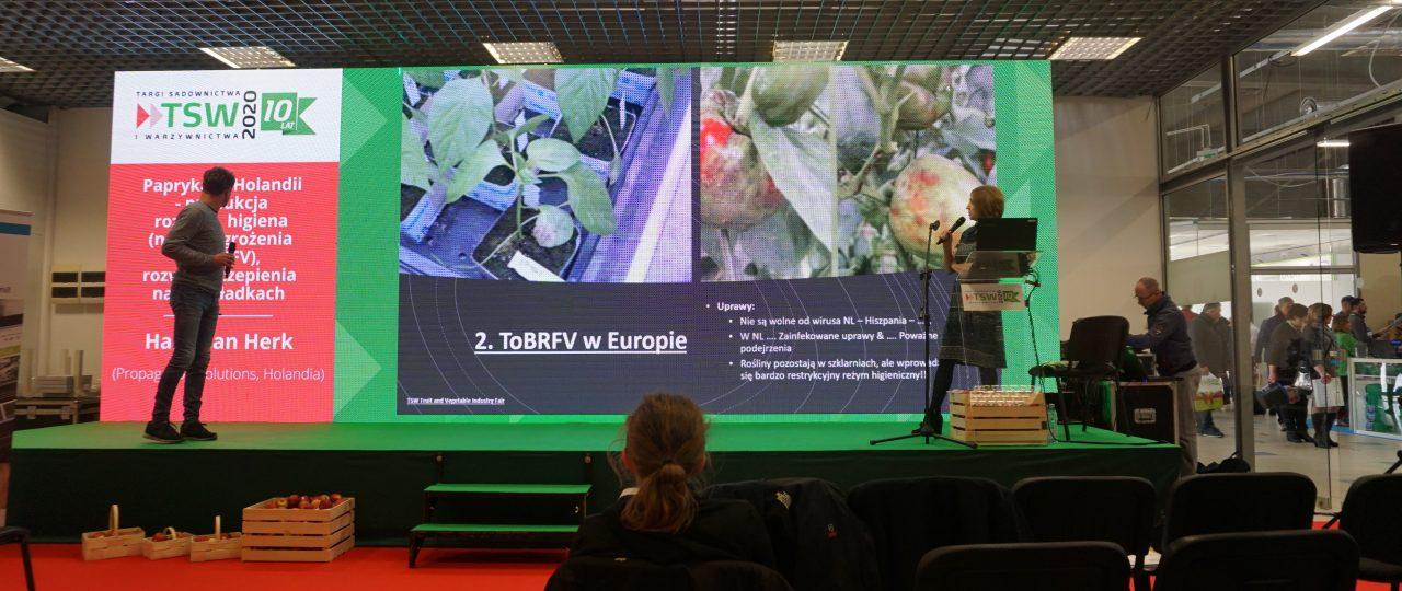 Trendy i zagrożenia w produkcji rozsady pomidorów – Hans van Herk (wykład z TSW)